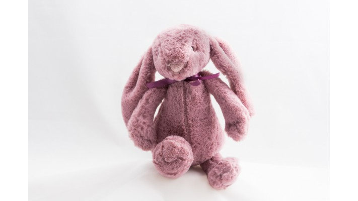 Old Pink Plush Rabbit