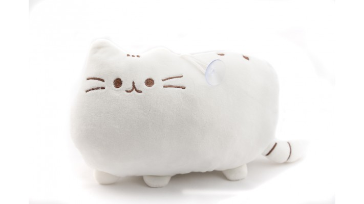 White Pusheen